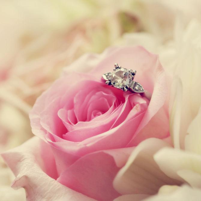 rose diamond_opt